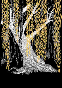 Legend-of-the-willow-couverture